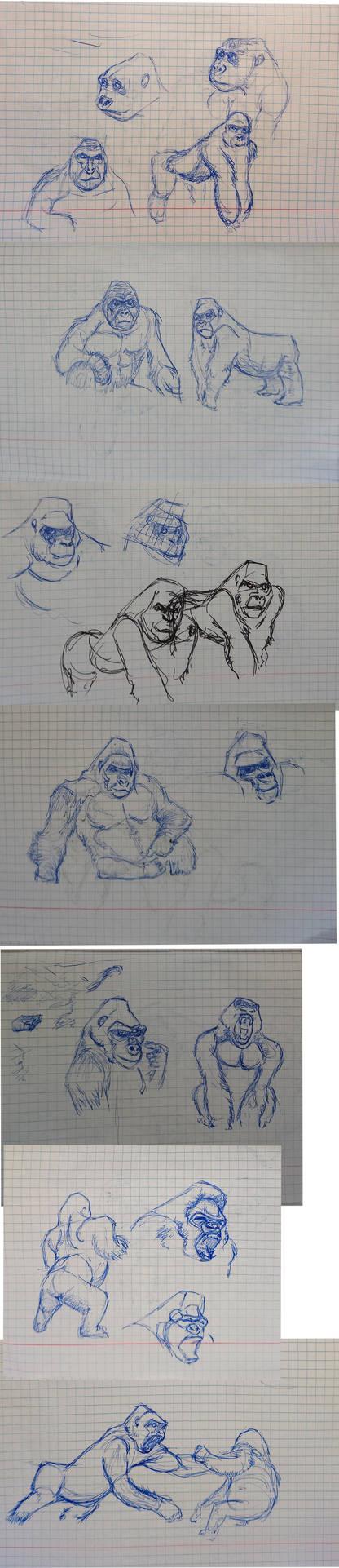 GorillaStudy by Reisen84