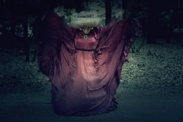 Spirited Away - witch by FrauDoku