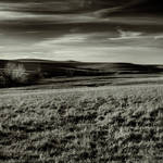 The Prairie at Dusk by clippercarrillo