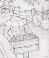 Apples by drawfellas