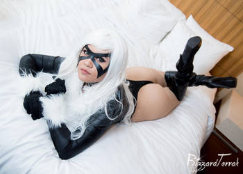 COMI16 - Black Cat by BlizzardTerrak