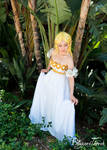 AX17 - Zelda x Princess Serenity by BlizzardTerrak
