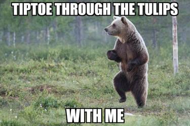 A meme about a bear by CraftedArtist