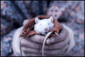 krys by SLiZka
