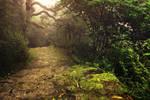 Autumn Walk by A2Matos