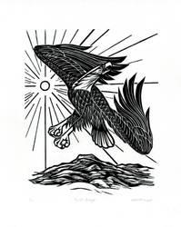 Bald Eagle by AmandaMyers