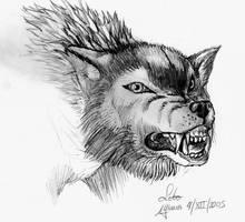 Lobo by MLinares