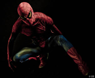 The Amazing Spiderman. by OmarEstradaSLR