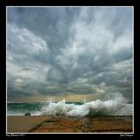 Sea Tongue by Aderet