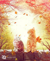 Two Cats In Falling Leaves by Rexionete