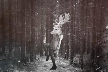doe deer by my2candy