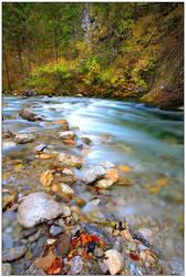 An Autumn Blur by Daxius