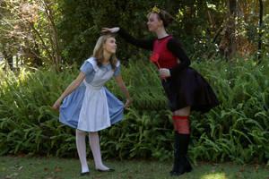 Alice in Wonderland by Leen88