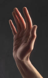 14.09  Hand study by SaiTeadvuse