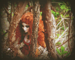 In an enchanted forest ... by AmeliaMadHatter