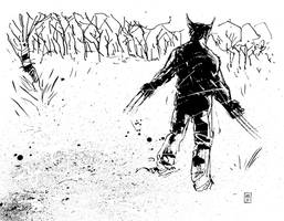 Wolverine in the snow by JasonCopland
