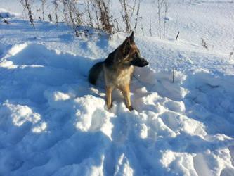 Rita winter by Lord-Sagoth