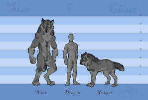 A Knave's Size Chart by RedWolfmoon