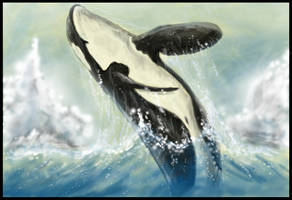 Leaping Orca - Tablet by SyKoticOrKa