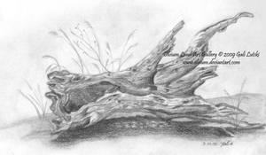 Olive Tree Trunk by Olvium