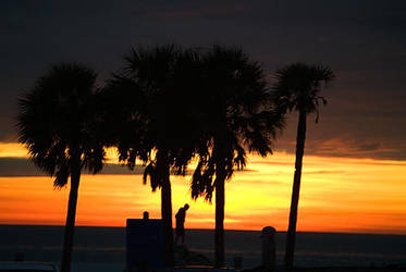 Florida Sunset by xxtd0gxx