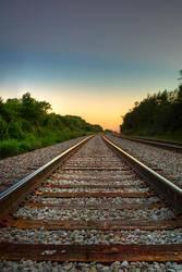 Ride the Rail by xxtd0gxx