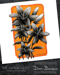 Ink Asiatic Lilies by Donny-B