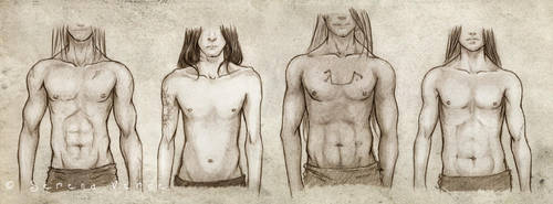 Animae - Body Types: the boys by SerenaVerdeArt