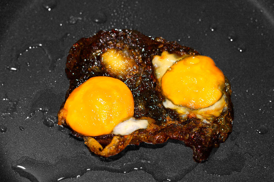 burnt egg by incredibledictu