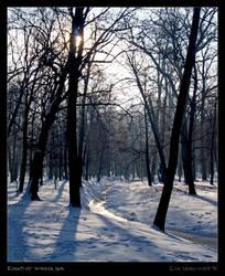 Touch of winter sun by Zair-Ugru-nad