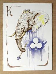 Elephant - Fiori by OrangeSwine