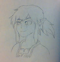 Link by phythonking