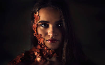 the girl in leaves by hispanhun