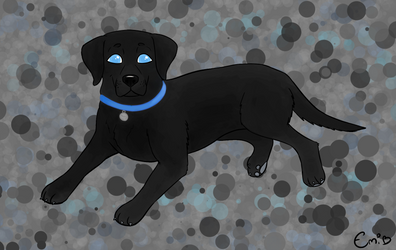 Gift: Black Lab Boi by CraftyEmily