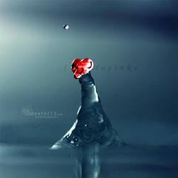 WaterHeart-c for topinka by dexter13-sk
