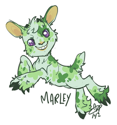 MarleyJump600 by CloverCoin