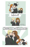 no 1 couple of hogwarts by DawnElaineDarkwood