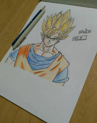 Goku by MaxB-92