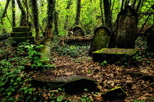 Jewish cemetery 2 by aniaw