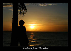 Post Card From Paradise by monkeyman1988