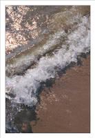 Breakwater by TowiWakka