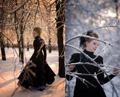 Winter fairytale 02 by antiquecameo