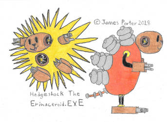 Hedgeshock The Erinaceroid.EXE. by Rock-Raider
