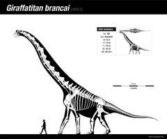 Giraffatitan brancai by Asier-Larramendi
