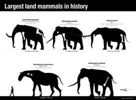 The largest land mammals in history by Asier-Larramendi