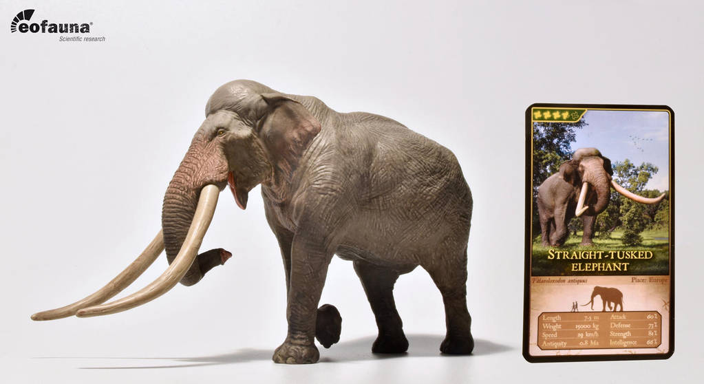 Straight-tusked elephant 1:35 PVC figure - Eofauna by Asier-Larramendi
