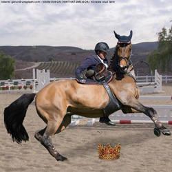 Horse 2 by kirraleestudfarmHEE