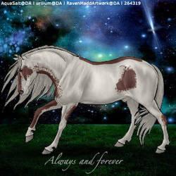 Always and forever by kirraleestudfarmHEE
