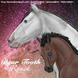 Bear tooth ranch by kirraleestudfarmHEE