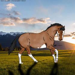 Coloured line art horse by kirraleestudfarmHEE